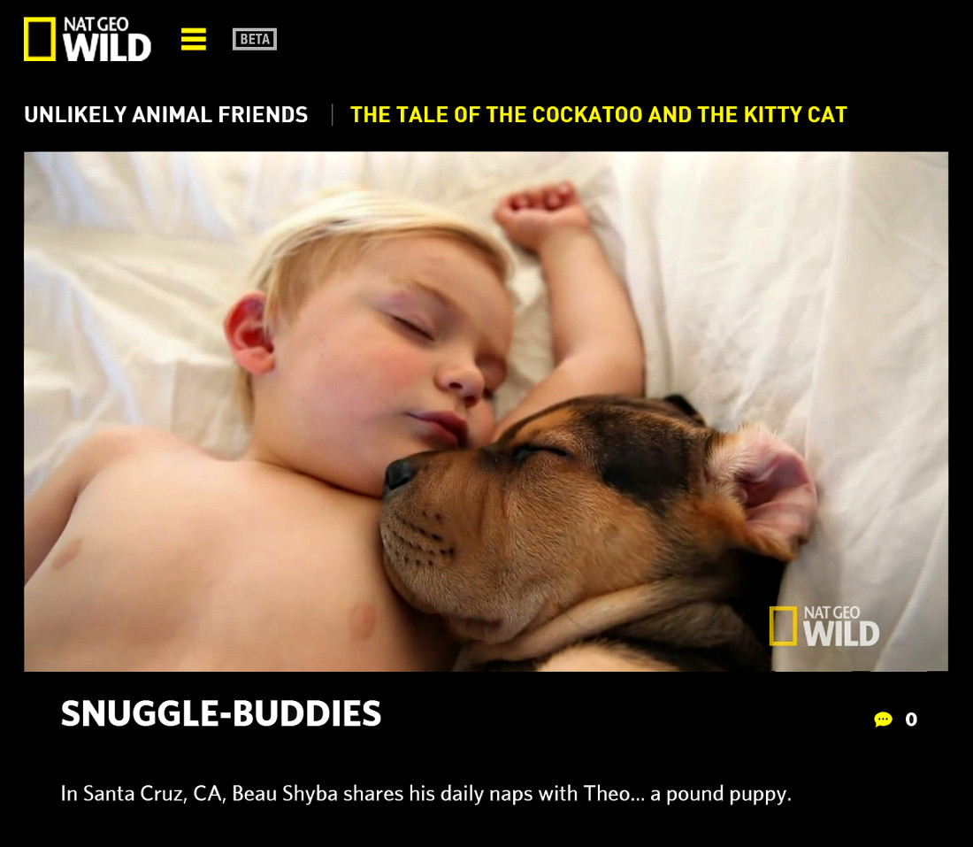 national geographic theo and beau