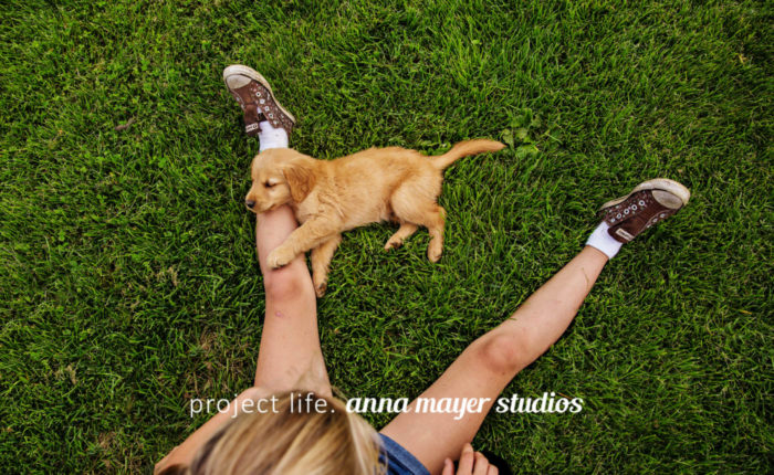 bug-and-her-puppy-0816-1221-Edit.jpg
